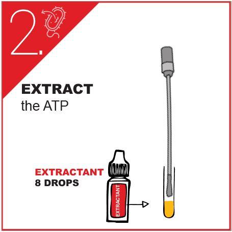ATP test kit DENDRIDIAG surface protocol (2)